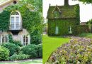BEAUTIFUL HOUSES WITH GREEN FACADES